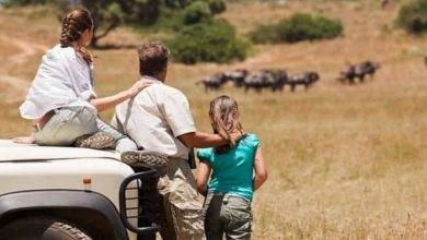 Five Thrilling jungle safari spots with a primitive touch