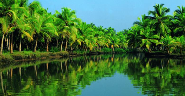 Kerala backwater tour pacakge – Attractions to see at Kerala backwater