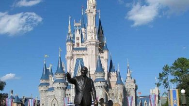 Photo of Crazy, unknown facts about Walt Disney World