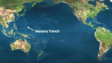 Five things you might encounter on your visit to the Mariana Trench