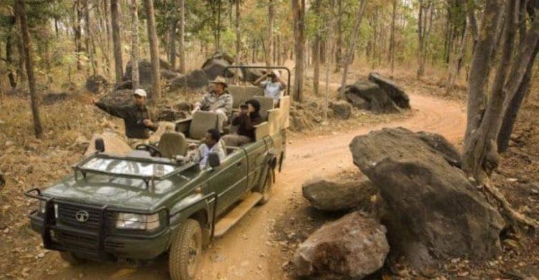 Khajuraho Wild life safari – Special attraction