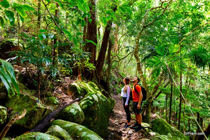 Australian bush walking