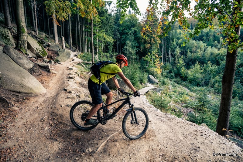 Mountain biker riding on bike on forest dirt trail