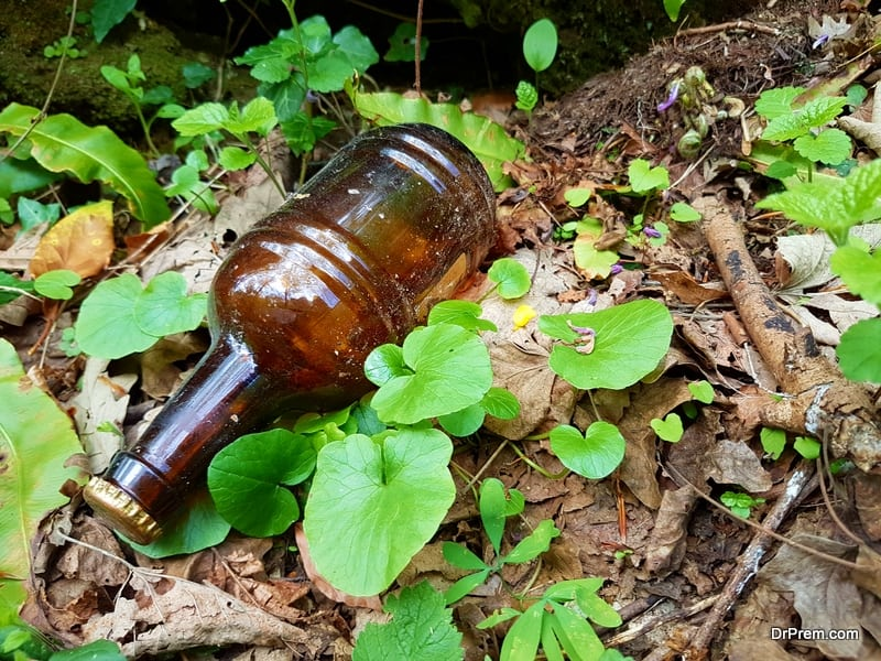 empty-beer-bottle-dumped-in-forest