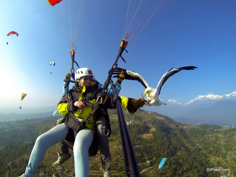 ,the travelers go paragliding