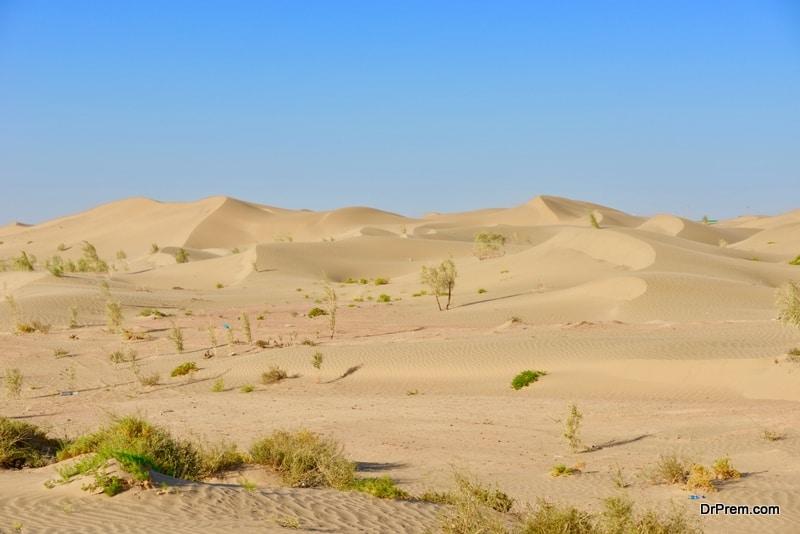 Karakum-desert.