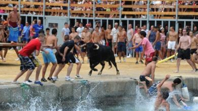 Photo of Some unusual festivals that you will dare