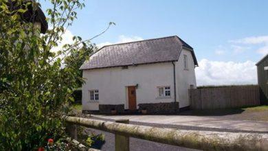 Cherryblossom Cottage - Devon
