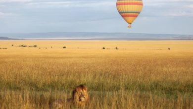 Kenyan balloon safari