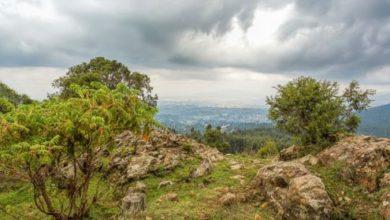Photo of Mountain Entoto, Ethiopia