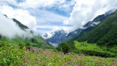 Valley of Flowers, Uttaranchal