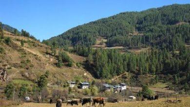 Photo of Nangnang Village – Bhutan
