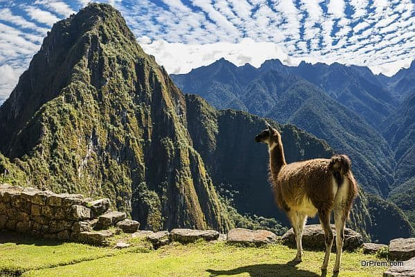 Photo of A quick guide for your travel to Machu Picchu