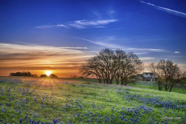 Photo of Texas Hill Country – United States