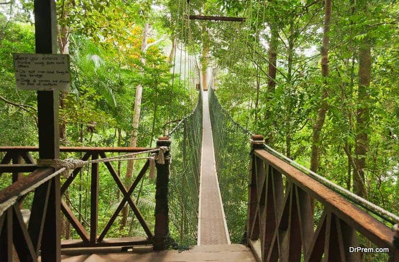 Photo of 11 Coolest budget weekend getaways in Malaysia
