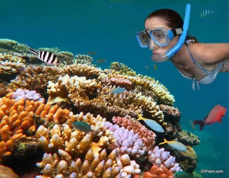 Barrier Reef,