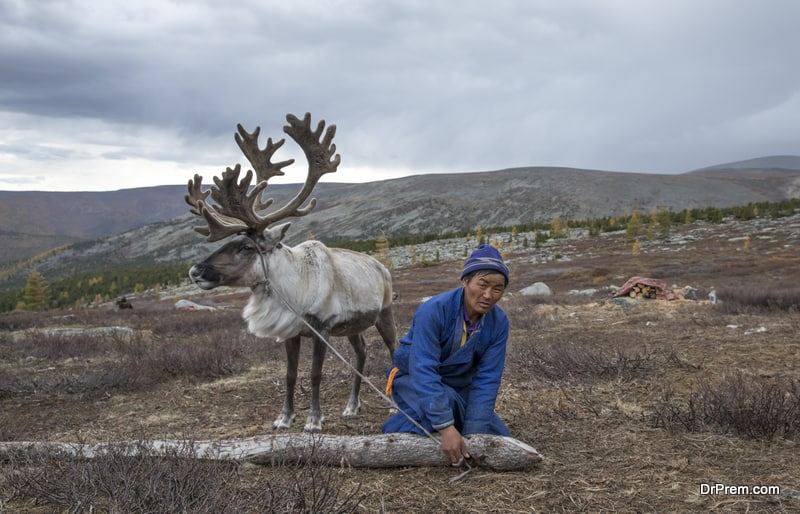 Meet the last reindeer tribe