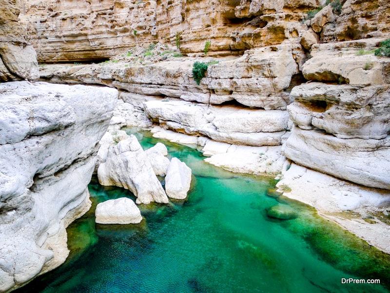 Oman's bio-diversity