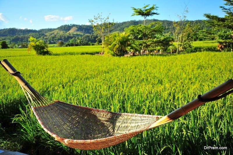 greenery amid countryside