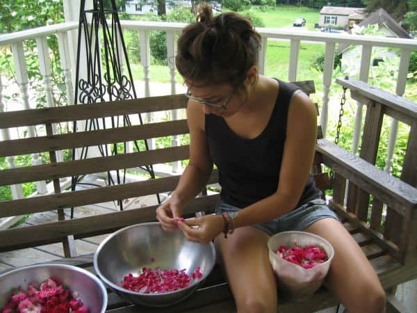 Pizza, Rose water, wildcrafting 027