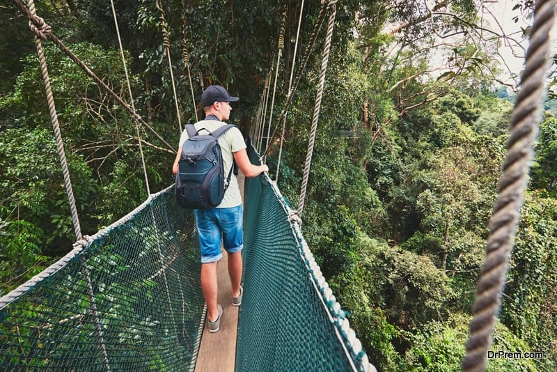 Tourist on the elevated walkway through the treetops in rainforest - Borneo, Malaysia