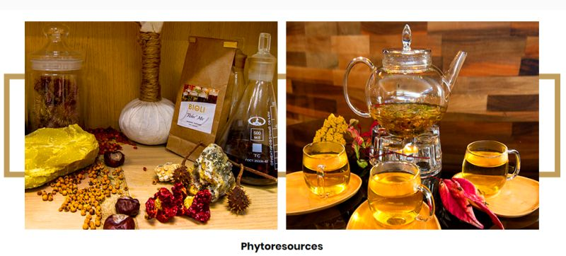 phytoresources