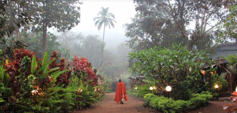 SWAN Yoga Retreat in Goa