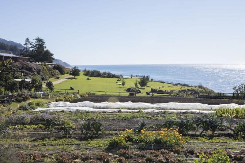 Esalen Spiritual Retreat in California