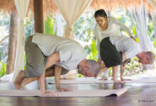 Photo of Guide to understanding varied services at wellness resorts