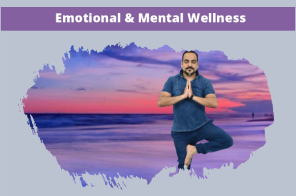 Dr Prem Emotional and Mental Wellness Training at Training.DrPrem.com