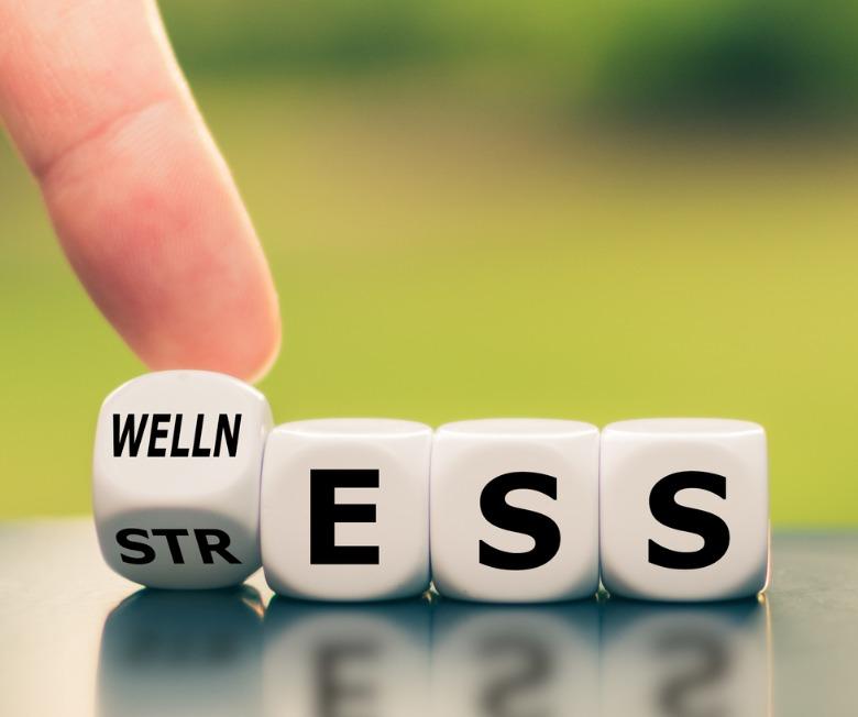Wellness Terms